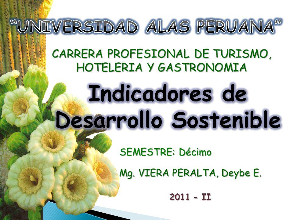 SEMESTRE: Décimo CARRERA PROFESIONAL DE TURISMO, HOTELERIA Y GASTRONOMIA Mg. VIERA PERALTA, Deybe E. 2011 - II