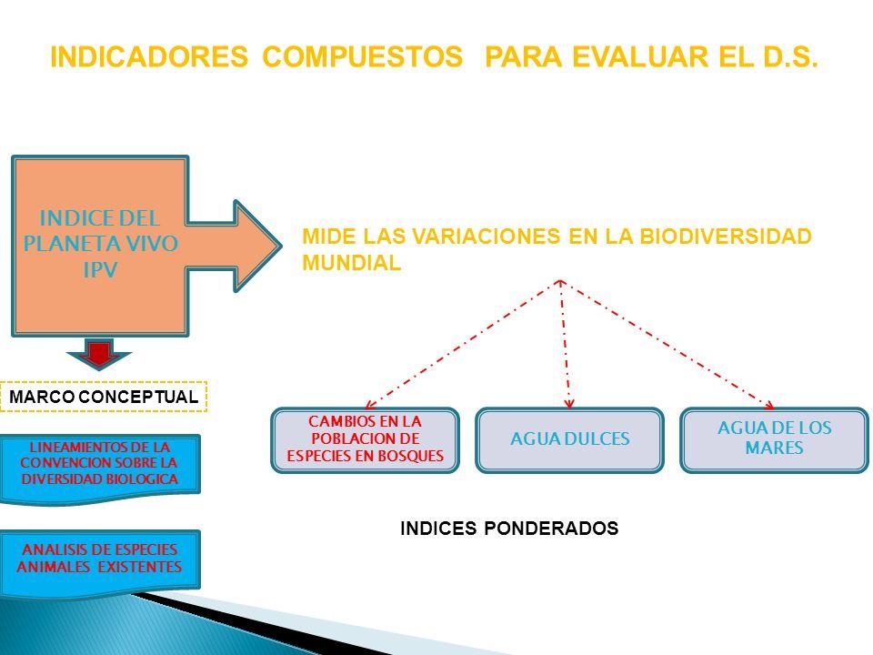 INDICADORES COMPUESTOS PARA EVALUAR EL D.S. INDICE DEL PLANETA VIVO IPV MIDE LAS VARIACIONES EN LA BIODIVERSIDAD MUNDIAL AGUA DE LOS MARES CAMBIOS EN