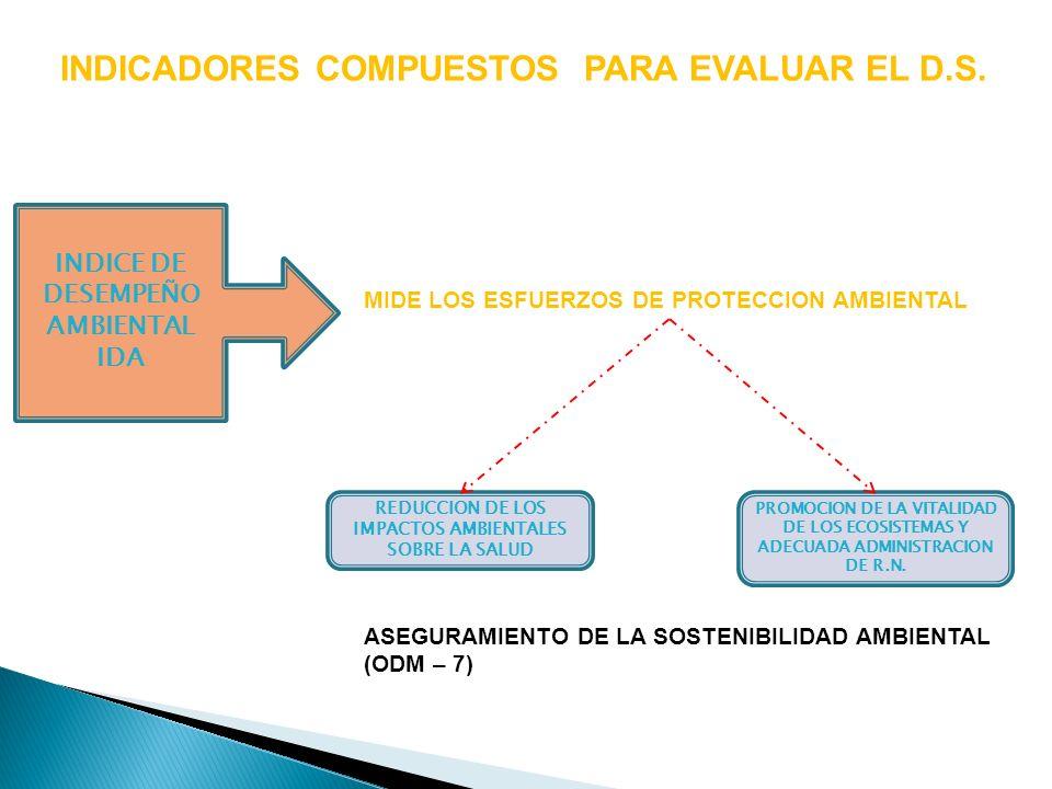 INDICADORES COMPUESTOS PARA EVALUAR EL D.S. INDICE DE DESEMPEÑO AMBIENTAL IDA MIDE LOS ESFUERZOS DE PROTECCION AMBIENTAL REDUCCION DE LOS IMPACTOS AMB