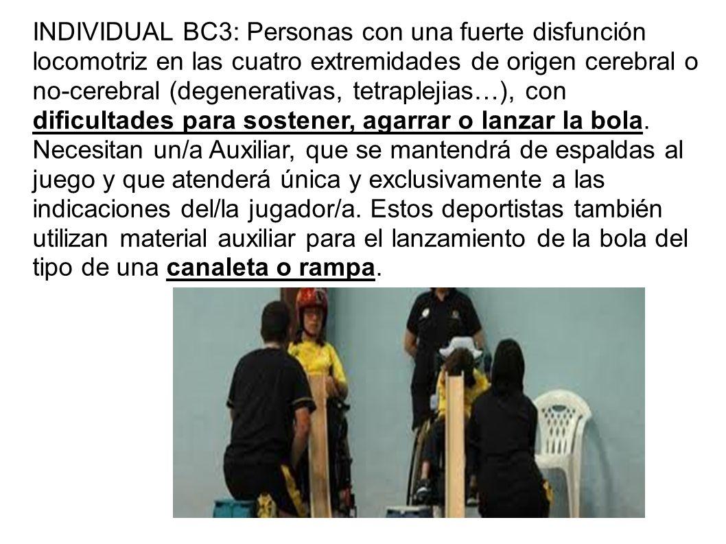 INDIVIDUAL BC3: Personas con una fuerte disfunción locomotriz en las cuatro extremidades de origen cerebral o no-cerebral (degenerativas, tetraplejias