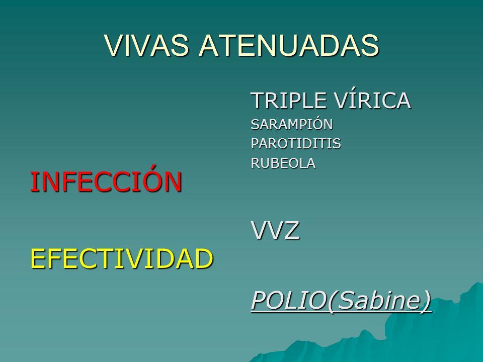 VIVAS ATENUADAS INFECCIÓNEFECTIVIDAD TRIPLE VÍRICA SARAMPIÓNPAROTIDITISRUBEOLAVVZPOLIO(Sabine)