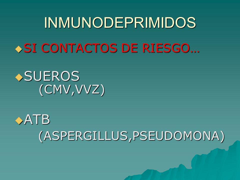 INMUNODEPRIMIDOS SI CONTACTOS DE RIESGO… SI CONTACTOS DE RIESGO… SUEROS (CMV,VVZ) SUEROS (CMV,VVZ) ATB ATB (ASPERGILLUS,PSEUDOMONA) (ASPERGILLUS,PSEUD