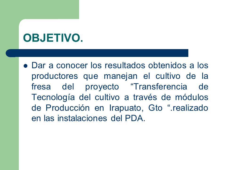 OBJETIVO. Dar a conocer los resultados obtenidos a los productores que manejan el cultivo de la fresa del proyecto Transferencia de Tecnología del cul