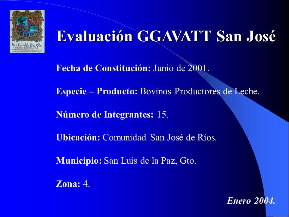 Evaluación GGAVATT San José Fecha de Constitución: Junio de 2001. Especie – Producto: Bovinos Productores de Leche. Número de Integrantes: 15. Ubicaci