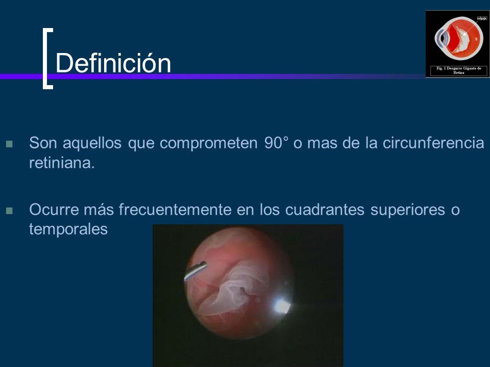 Definición Son aquellos que comprometen 90° o mas de la circunferencia retiniana. Ocurre más frecuentemente en los cuadrantes superiores o temporales