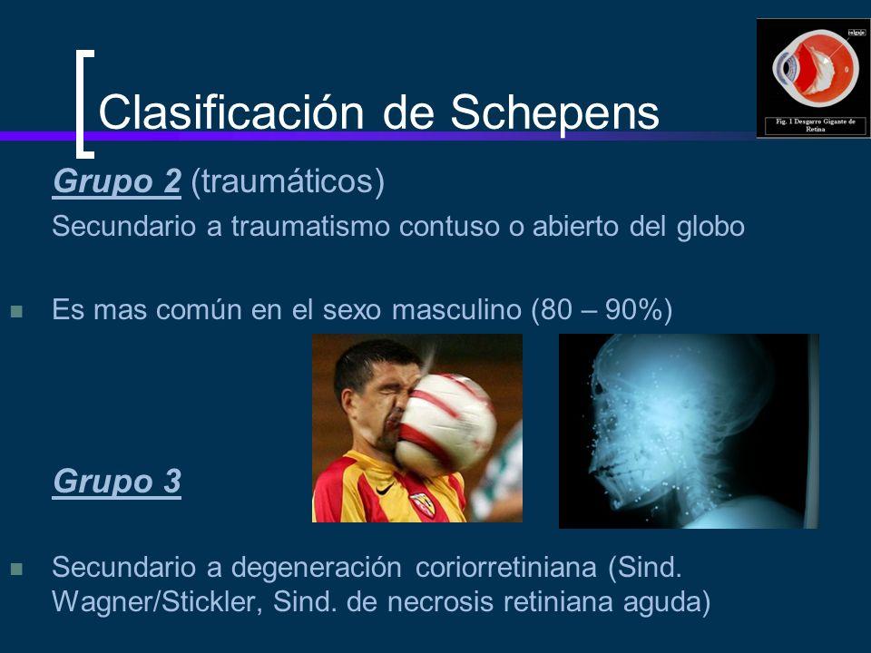 Clasificación de Schepens Grupo 2 (traumáticos) Secundario a traumatismo contuso o abierto del globo Es mas común en el sexo masculino (80 – 90%) Grup