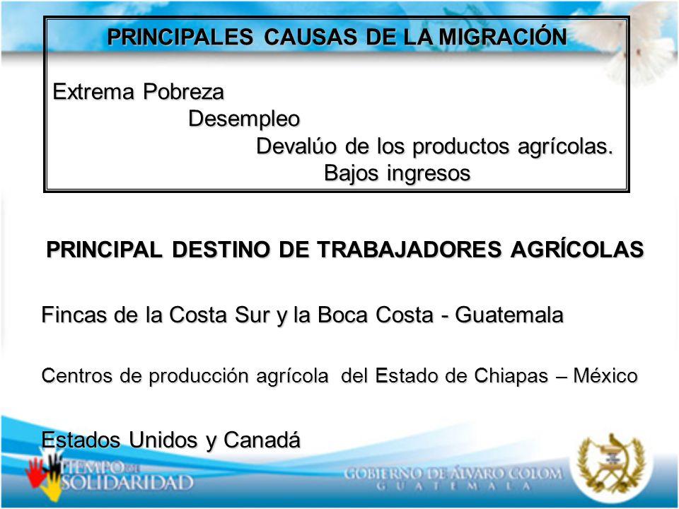 PRINCIPALES CAUSAS DE LA MIGRACIÓN Extrema Pobreza Desempleo Desempleo Devalúo de los productos agrícolas. Devalúo de los productos agrícolas. Bajos i