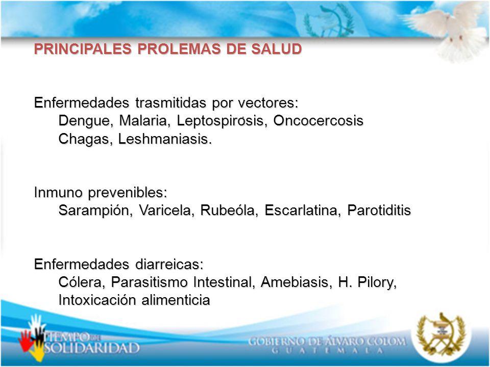 . PRINCIPALES PROLEMAS DE SALUD Enfermedades trasmitidas por vectores: Dengue, Malaria, Leptospirosis, Oncocercosis Chagas, Leshmaniasis. Inmuno preve