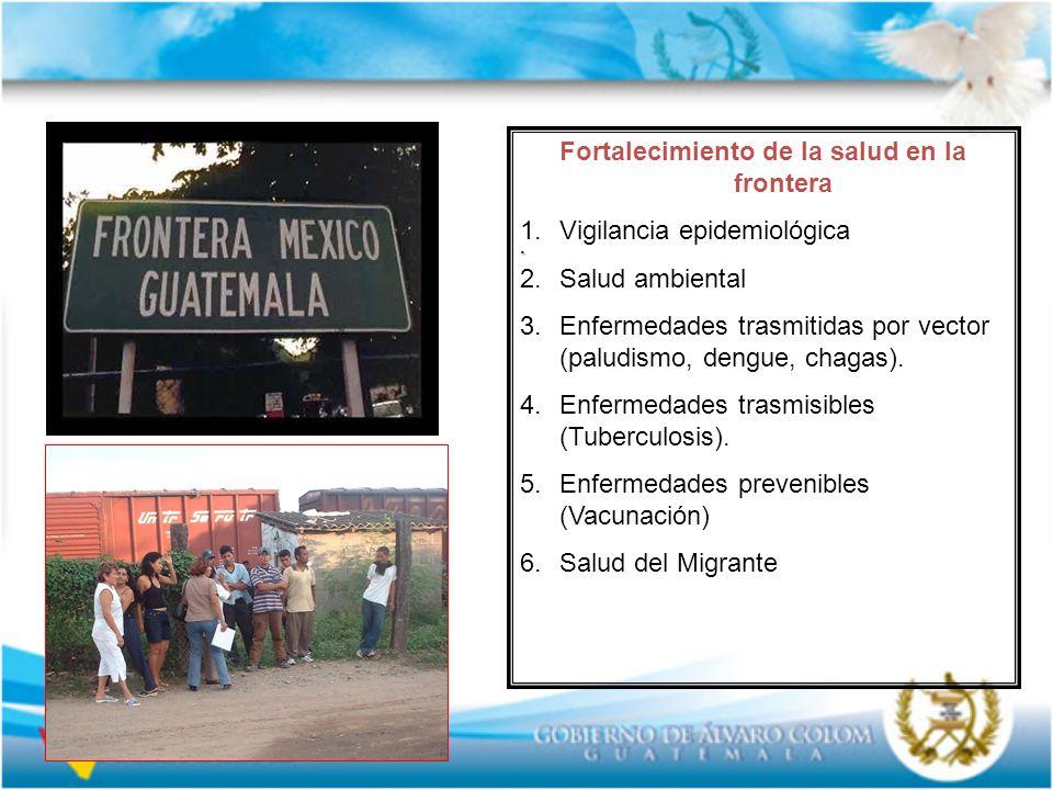 . Fortalecimiento de la salud en la frontera 1.Vigilancia epidemiológica 2.Salud ambiental 3.Enfermedades trasmitidas por vector (paludismo, dengue, c