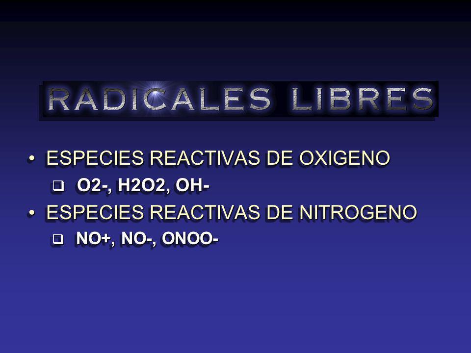 ESPECIES REACTIVAS DE OXIGENOESPECIES REACTIVAS DE OXIGENO O2-, H2O2, OH- O2-, H2O2, OH- ESPECIES REACTIVAS DE NITROGENOESPECIES REACTIVAS DE NITROGENO NO+, NO-, ONOO- NO+, NO-, ONOO- ESPECIES REACTIVAS DE OXIGENOESPECIES REACTIVAS DE OXIGENO O2-, H2O2, OH- O2-, H2O2, OH- ESPECIES REACTIVAS DE NITROGENOESPECIES REACTIVAS DE NITROGENO NO+, NO-, ONOO- NO+, NO-, ONOO-