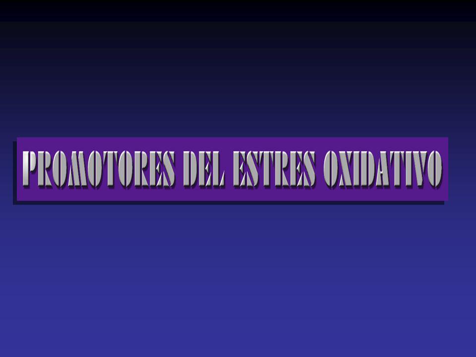 O2O2O2O2 O2O2O2O2 O2-.O2-.O2-.O2-. O2-.O2-.O2-.O2-. ONOO. NONO NO sintasa Cadenatransportadora De electrones Cadenatransportadora NADPH oxidasa/ Otras