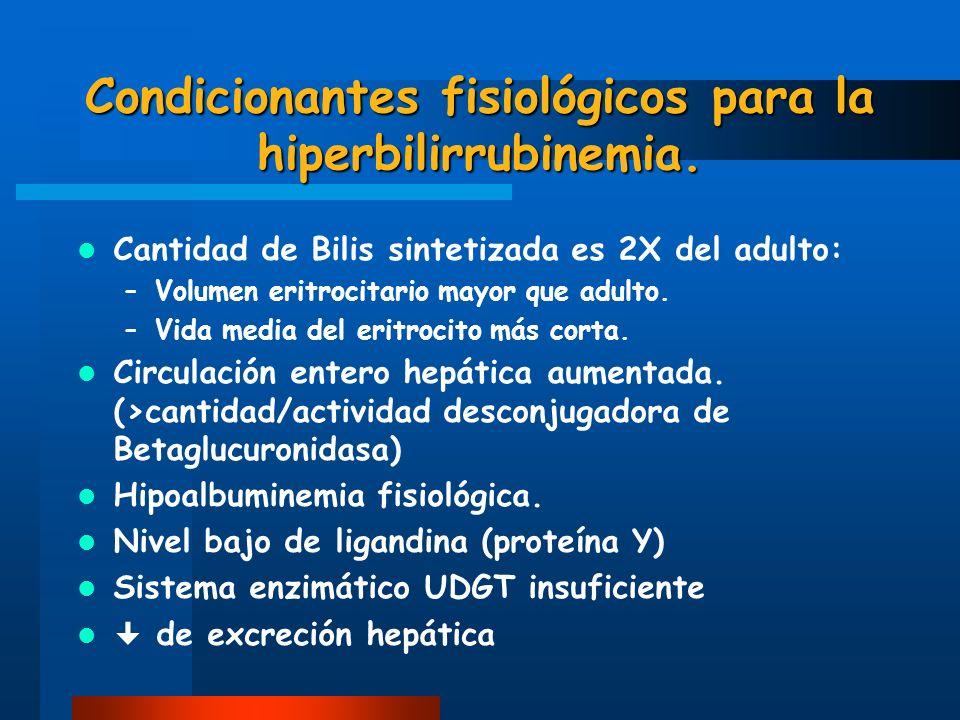 Condicionantes fisiológicos para la hiperbilirrubinemia. Cantidad de Bilis sintetizada es 2X del adulto: –Volumen eritrocitario mayor que adulto. –Vid