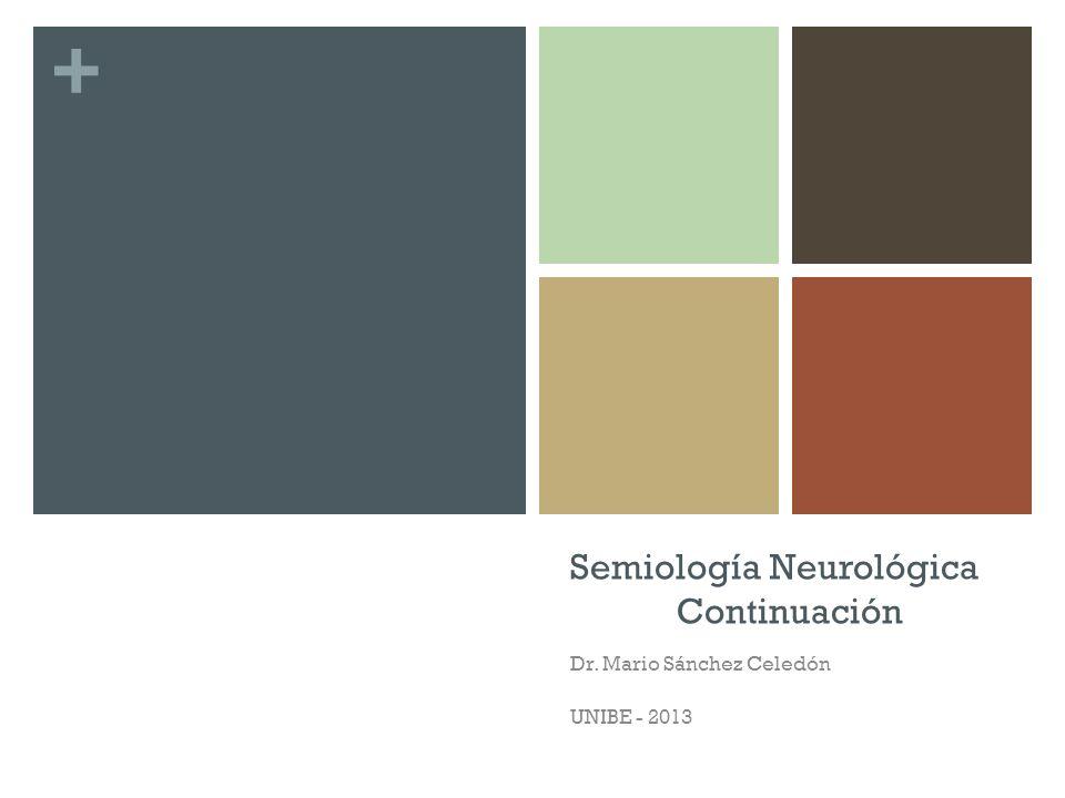 + Semiología Neurológica Continuación Dr. Mario Sánchez Celedón UNIBE - 2013
