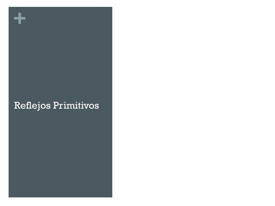 + Reflejos Primitivos