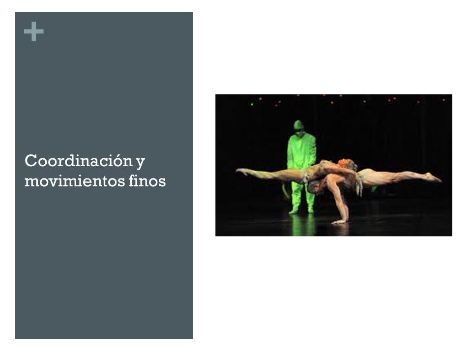 + Coordinación y movimientos finos