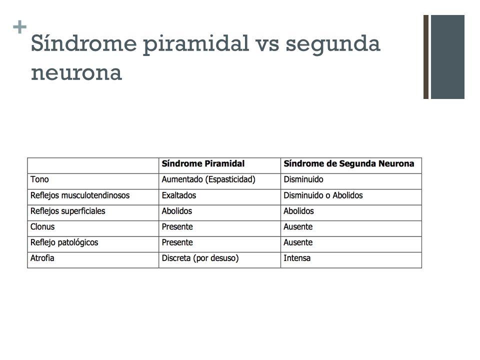 + Síndrome piramidal vs segunda neurona