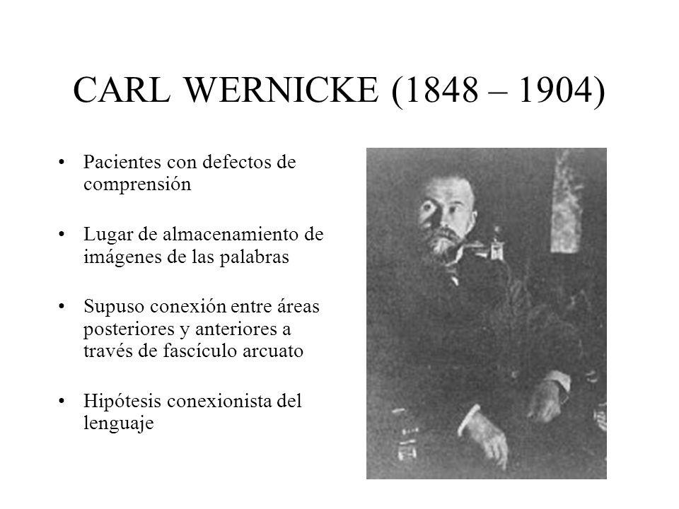 CARL WERNICKE (1848 – 1904) Pacientes con defectos de comprensión Lugar de almacenamiento de imágenes de las palabras Supuso conexión entre áreas post