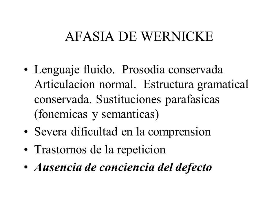 AFASIA DE WERNICKE Lenguaje fluido. Prosodia conservada Articulacion normal. Estructura gramatical conservada. Sustituciones parafasicas (fonemicas y