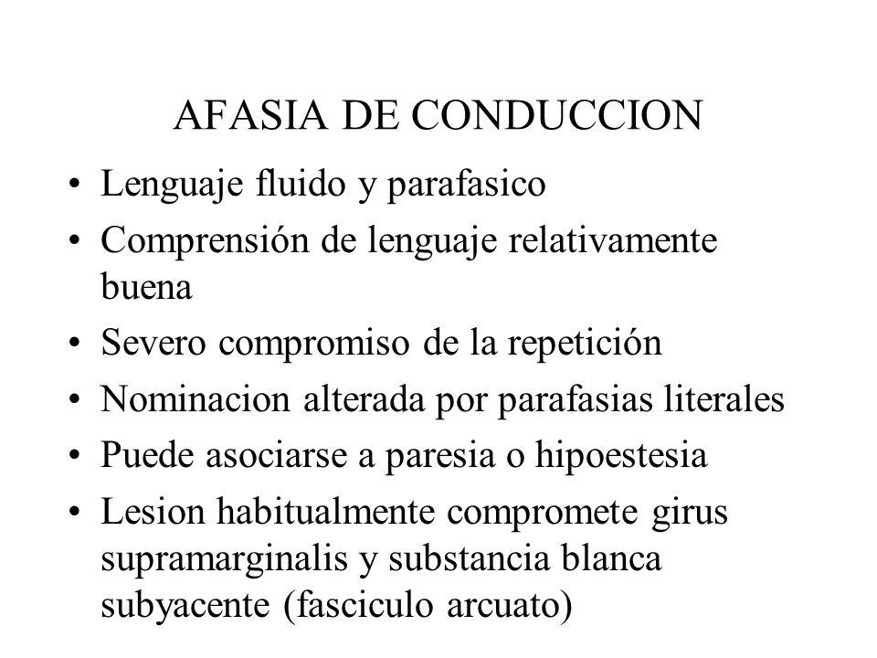 AFASIA DE CONDUCCION Lenguaje fluido y parafasico Comprensión de lenguaje relativamente buena Severo compromiso de la repetición Nominacion alterada p