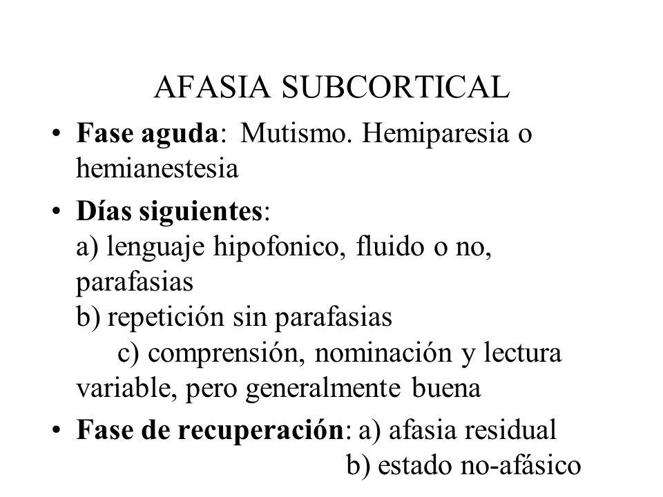AFASIA SUBCORTICAL Fase aguda: Mutismo. Hemiparesia o hemianestesia Días siguientes: a) lenguaje hipofonico, fluido o no, parafasias b) repetición sin