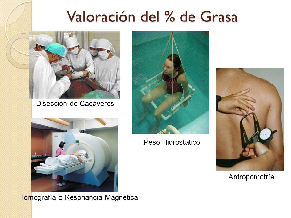 Valoración del % de Grasa Disección de Cadáveres Peso Hidrostático Tomografía o Resonancia Magnética Antropometría
