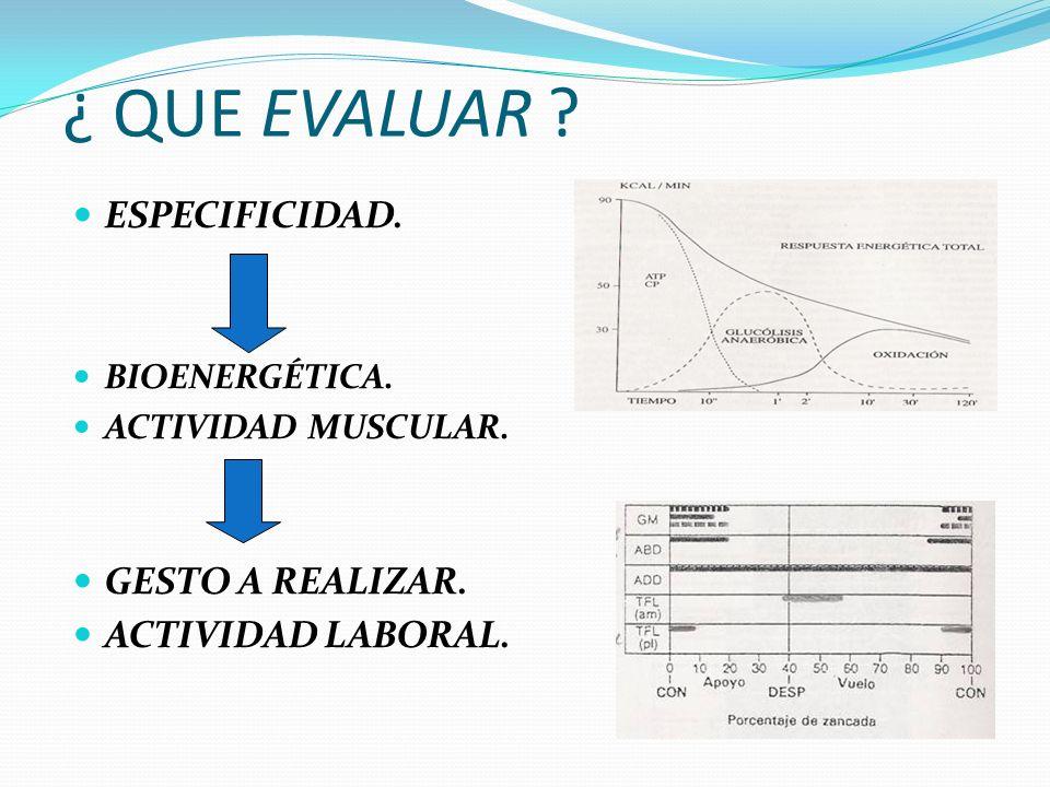 ¿ QUE EVALUAR .ESPECIFICIDAD. BIOENERGÉTICA. ACTIVIDAD MUSCULAR.