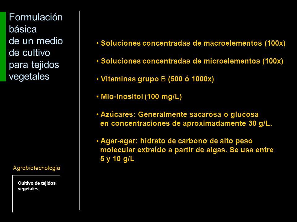 El metabolismo de los tejidos puede modificarse dependiendo de las características del medio de cultivo (líquido o semi-sólido).