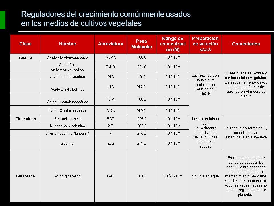 Grupos básicos de reguladores del crecimiento: - Auxinas - Citocininas - Giberelinas - Acido abscísico - Etileno Generalidades: - Actúan a bajas concentraciones - Interactúan unos con otros (los resultados están determinados por las concentraciones relativas entre las diferentes fitohormonas).