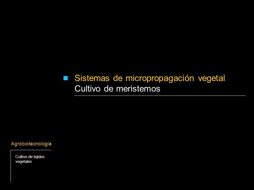 Posibilitan la micropropagación de diferentes especies vegetales.
