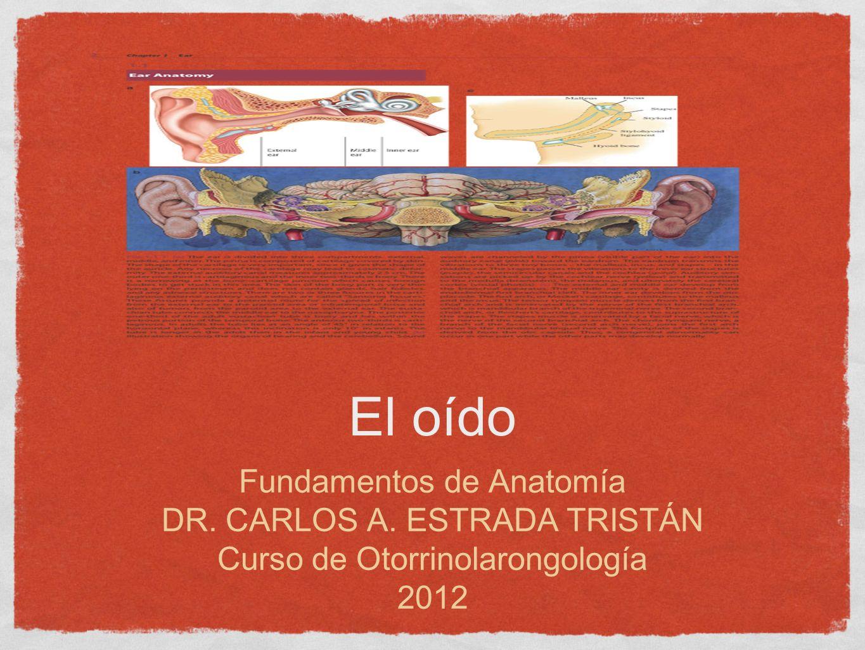 El oído Fundamentos de Anatomía DR. CARLOS A. ESTRADA TRISTÁN Curso de Otorrinolarongología 2012