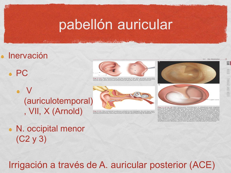 pabellón auricular Inervación PC V (auriculotemporal), VII, X (Arnold) N. occipital menor (C2 y 3) Irrigación a través de A. auricular posterior (ACE)