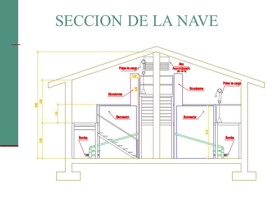 SECCION DE LA NAVE