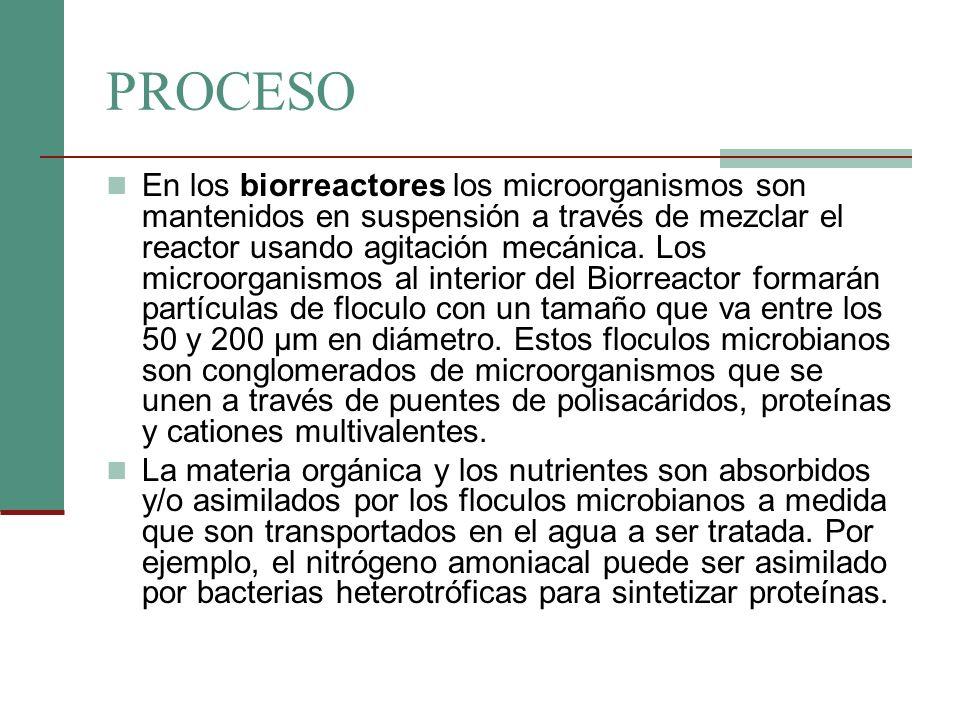 PROCESO En los biorreactores los microorganismos son mantenidos en suspensión a través de mezclar el reactor usando agitación mecánica. Los microorgan
