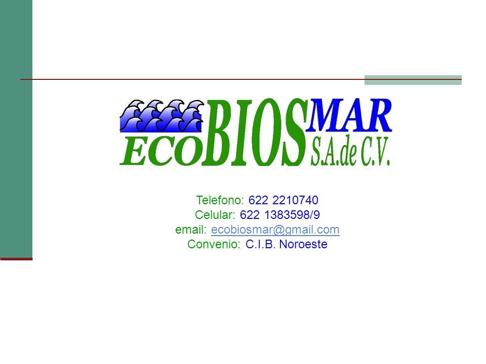 Telefono: 622 2210740 Celular: 622 1383598/9 email: ecobiosmar@gmail.comecobiosmar@gmail.com Convenio: C.I.B. Noroeste