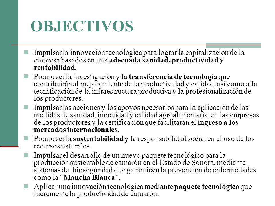 COSTO DE INVERSION CONCEPTOUNIDADESCOSTO ($MX) Nave para la produccion de probioticos1196,737.00 Tanque PEAD de 10 mc696,000.00 Paquete de valvulas y mangueras118,200.00 Bomba con impelente especial antishock bacteriano442,000.00 Biocolumna para la produccion de prebioticos27,455.00 Filtros varios (100 y 25 micras) con portafiltros de 20118,249.60 Filtro UV de 7,000 litros/hora14,921.88 Probioticos marinos naturales210 kg128,625.00 Prebioticos naturales42 Lt41,895.00 Micronutriente (nitrógeno, fósforo, buffer tampón)1200 kg35,854.00 Aire acondicionado de 5 toneladas134,060.00 Gastos de movilidad y asesoría profesional7138,737.46 INVERSION POR UNIDAD PRODUCTIVA1762,734.94
