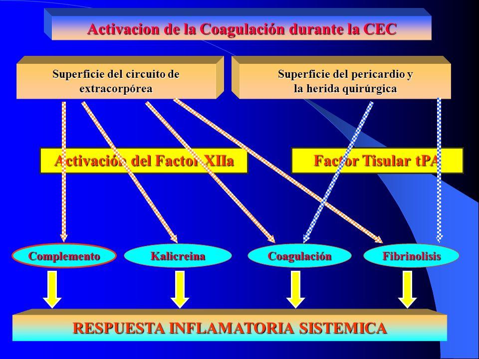 Activacion de la Coagulación durante la CEC Superficie del circuito de extracorpórea Superficie del pericardio y la herida quirúrgica RESPUESTA INFLAM
