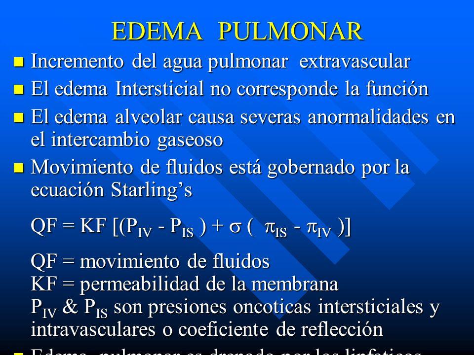 EDEMA PULMONAR Incremento del agua pulmonar extravascular Incremento del agua pulmonar extravascular El edema Intersticial no corresponde la función E