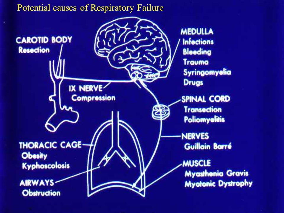 Insuficiencia Respiratoria Hipercapnica Causas Disfunción del centro respiratorio Disfunción del centro respiratorio Sobre dosis de drogas, CVA, tumor, hipotiroidismo, hipoventilación central Sobre dosis de drogas, CVA, tumor, hipotiroidismo, hipoventilación central Enfermedad Neuromuscular Guillain-Barre, Myasthenia Gravis, polio, trauma vertebro medular Enfermedad Neuromuscular Guillain-Barre, Myasthenia Gravis, polio, trauma vertebro medular Enfermedad de la Caja Toráxica y Pleura Cifoescoliosis, neumotorax, efusión pleural masiva Enfermedad de la Caja Toráxica y Pleura Cifoescoliosis, neumotorax, efusión pleural masiva Obstrucción vía áerea superior: tumor, cuerpo extraño y edema laringeo Obstrucción vía áerea superior: tumor, cuerpo extraño y edema laringeo Desordén via aerea periférica Desordén via aerea periférica asma, COPD