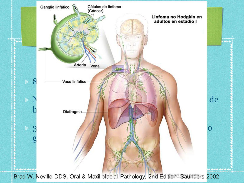 85 % de neoplasias de tejido linfoide. Neoplasias originadas de células T son raras y de histiocitos aun más 3 categorías: Bajo grado, grado intermedi