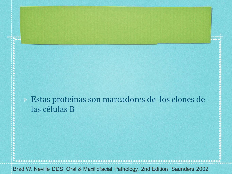 Estas proteínas son marcadores de los clones de las células B Brad W. Neville DDS, Oral & Maxillofacial Pathology, 2nd Edition Saunders 2002