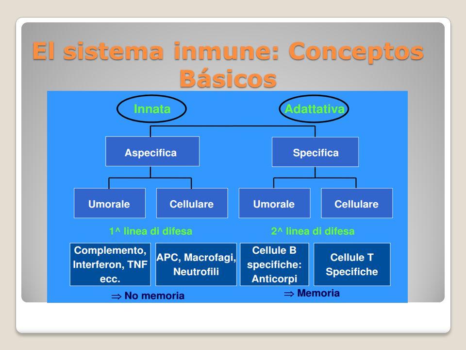 El sistema inmune: Conceptos Básicos