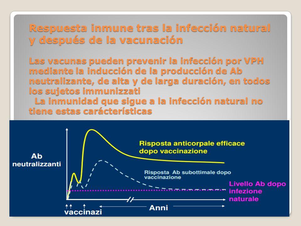 Respuesta inmune tras la infección natural y después de la vacunación Las vacunas pueden prevenir la infección por VPH mediante la inducción de la pro