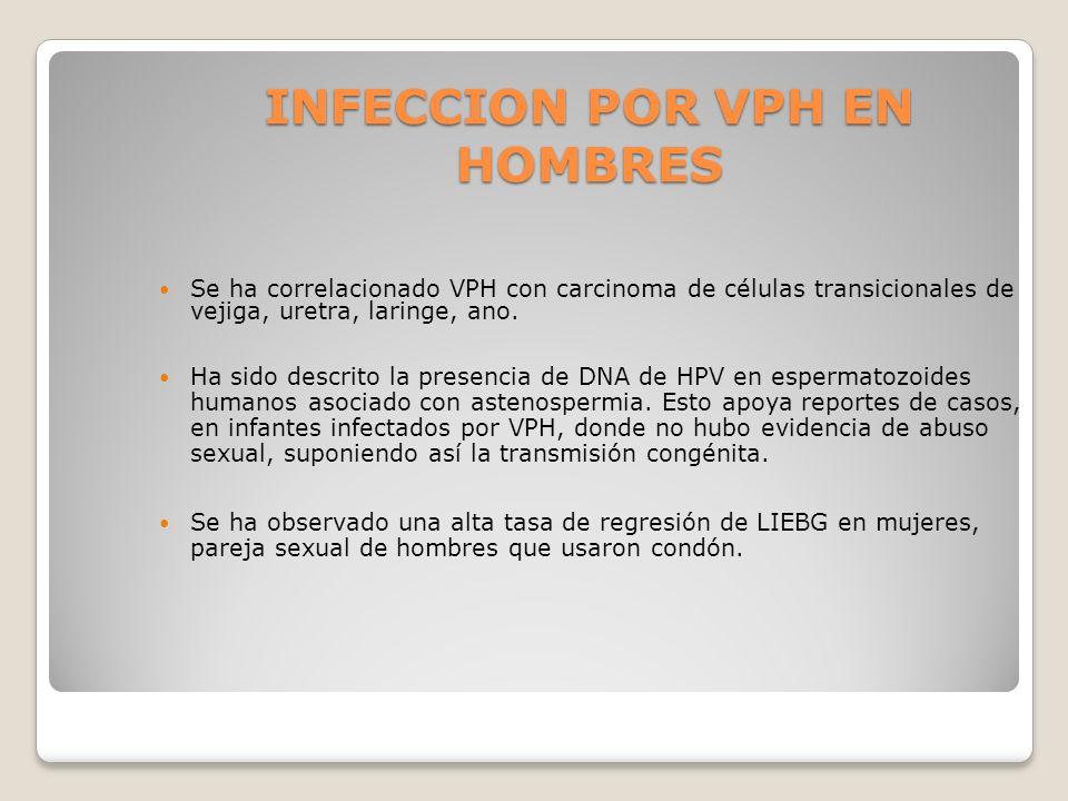 INFECCION POR VPH EN HOMBRES Se ha correlacionado VPH con carcinoma de células transicionales de vejiga, uretra, laringe, ano. Ha sido descrito la pre