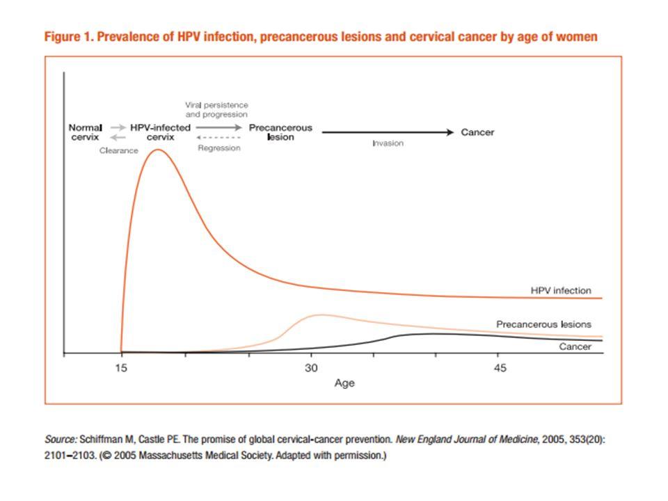 INFECCION POR VPH EN HOMBRES En el hombre la prevalencia de infección por el VPH está dada por el VPH 16, el más frecuente.