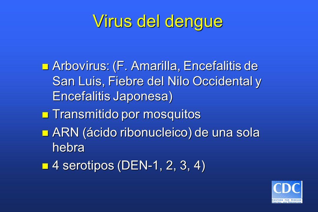 Virus del dengue n Arbovirus: (F. Amarilla, Encefalitis de San Luis, Fiebre del Nilo Occidental y Encefalitis Japonesa) n Transmitido por mosquitos n