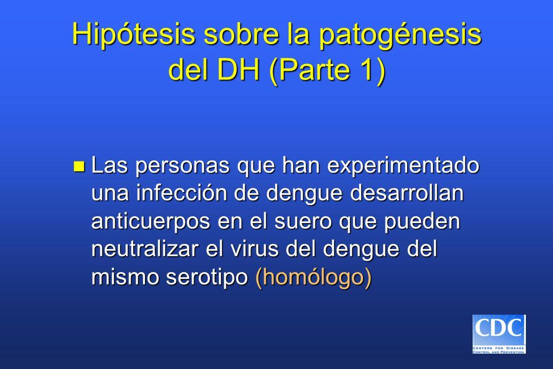 Hipótesis sobre la patogénesis del DH (Parte 1) n Las personas que han experimentado una infección de dengue desarrollan anticuerpos en el suero que p
