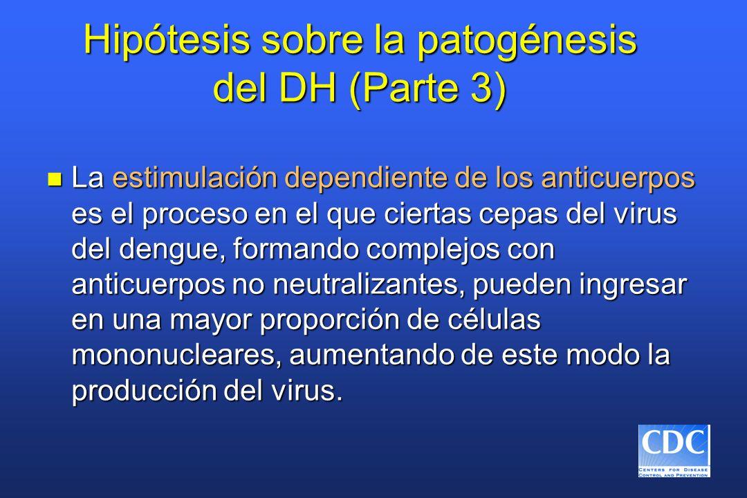 Hipótesis sobre la patogénesis del DH (Parte 3) n La estimulación dependiente de los anticuerpos es el proceso en el que ciertas cepas del virus del d