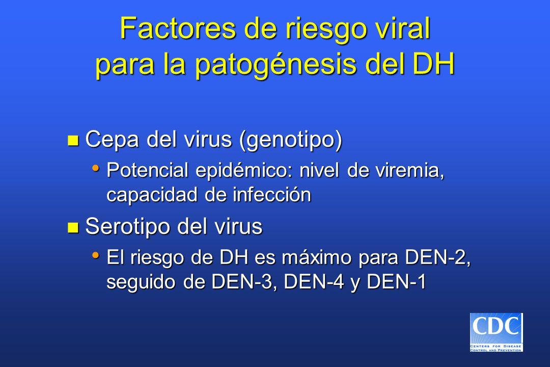 Factores de riesgo viral para la patogénesis del DH n Cepa del virus (genotipo) Potencial epidémico: nivel de viremia, capacidad de infección Potencia