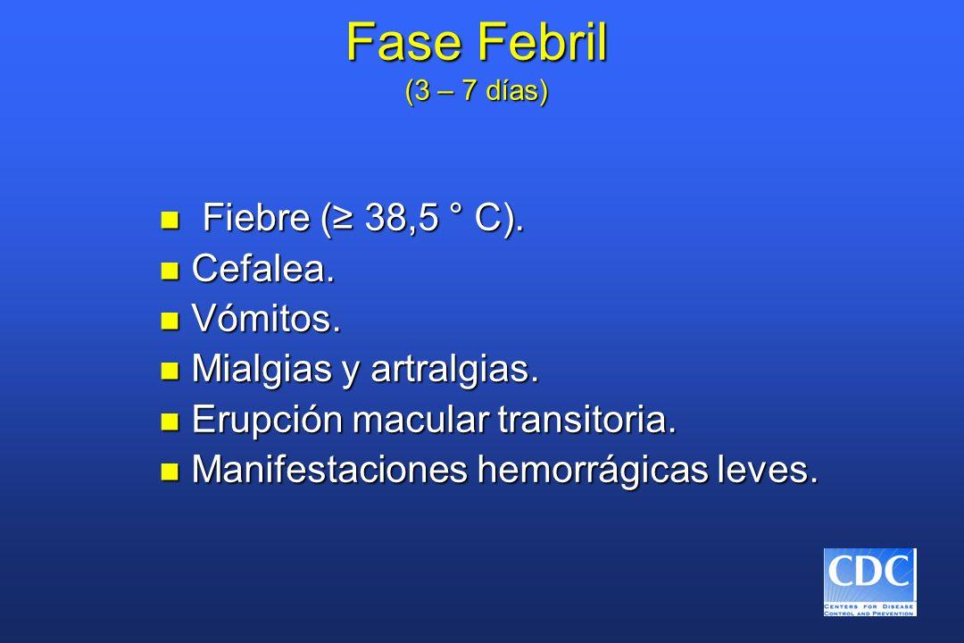 Fase Febril (3 – 7 días) n Fiebre ( 38,5 ° C). n Cefalea. n Vómitos. n Mialgias y artralgias. n Erupción macular transitoria. n Manifestaciones hemorr
