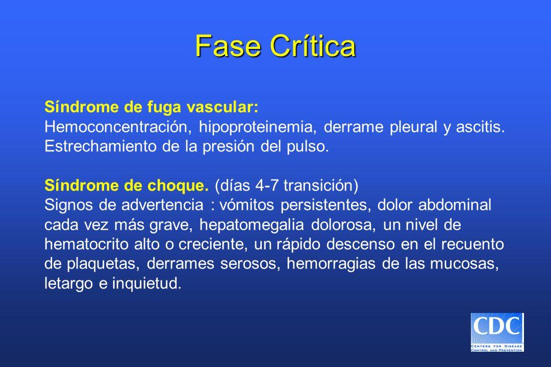 Fase Crítica Síndrome de fuga vascular: Hemoconcentración, hipoproteinemia, derrame pleural y ascitis. Estrechamiento de la presión del pulso. Síndrom